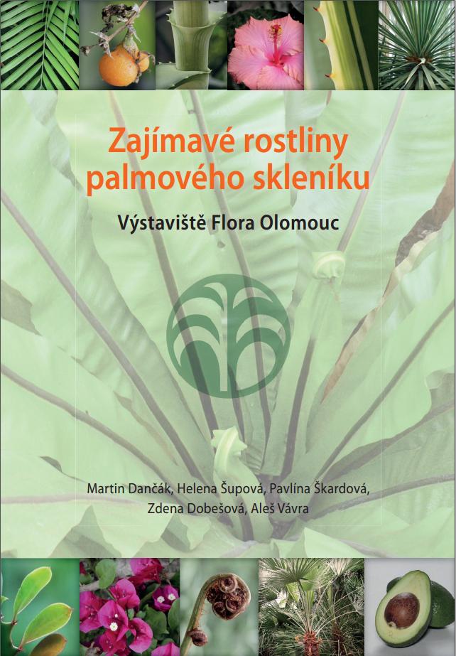 Zajímavé rostliny palmového skleníku